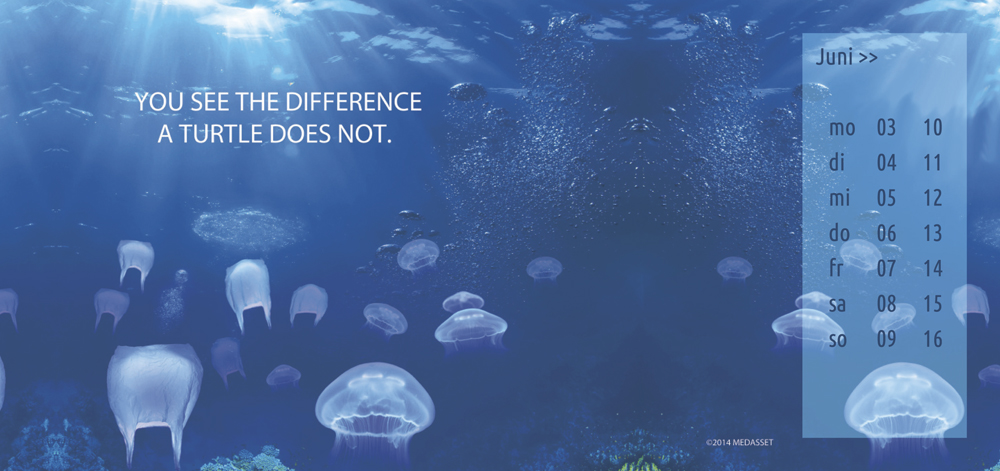 you see the difference a turtle does not.