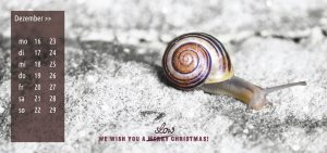We wish you a slow christmas!